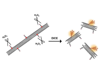 Fluorescent Ultrashort Nanotubes from Defect-Induced Chemical Cutting