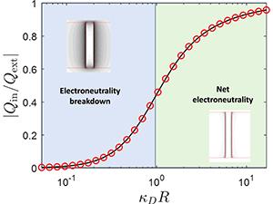 Breakdown of electroneutrality in nanopores