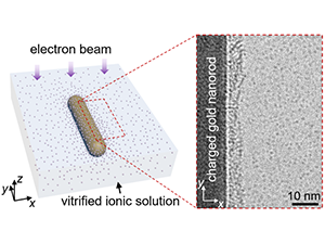 Imaging Arrangements of Discrete Ions at Liquid–Solid Interfaces