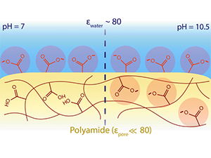 Ionization behavior of nanoporous polyamide membranes