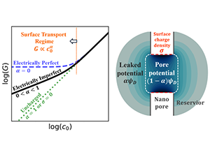 Ion Transport in Electrically Imperfect Nanopores