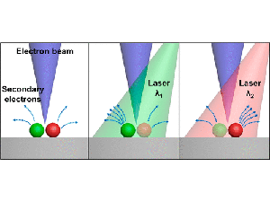 Photoabsorption Imaging at Nanometer Scales Using Secondary Electron Analysis